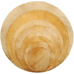 Natural Goat Skin Drum Head